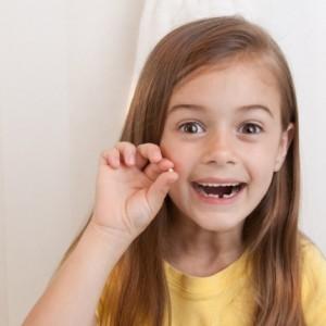 faktai apie dantis